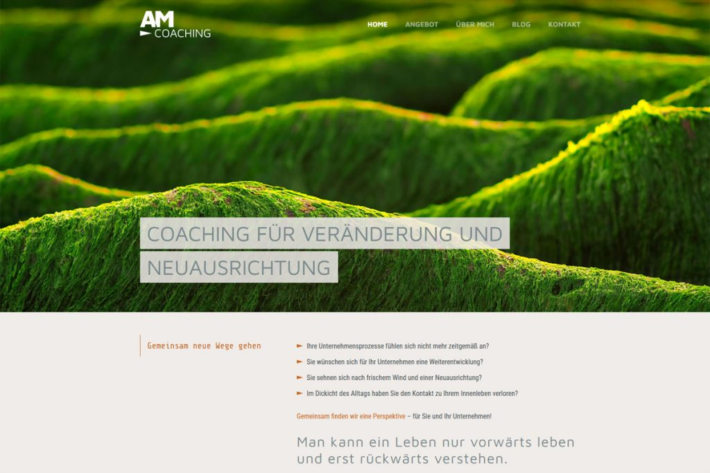 AM Coaching / Webdesign www.anitamoosherr.com